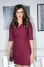 Evelyn Sharma at Dabboo Ratnani calendar launch in Mumbai on 12th Jan 2016