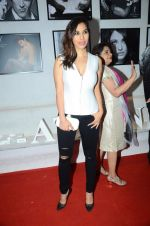 Sophie Chaudhary at Dabboo Ratnani calendar launch in Mumbai on 12th Jan 2016