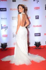 Elli Avram at Filmfare Awards 2016 on 15th Jan 2016 (597)_569b4562d6ad8.JPG