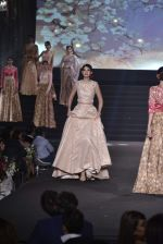 Model walk the ramp at Vikram Phadnis 25 years show on 16th Jan 2016 (176)_569b8f50cffb5.JPG