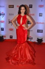 Nushrat Bharucha at Filmfare Awards 2016 on 15th Jan 2016 (191)_569b46a899ec5.JPG