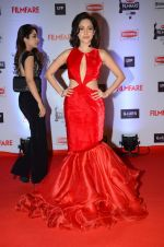 Nushrat Bharucha at Filmfare Awards 2016 on 15th Jan 2016 (433)_569b46aa328b7.JPG