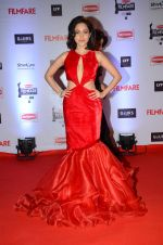 Nushrat Bharucha at Filmfare Awards 2016 on 15th Jan 2016 (434)_569b46aae5ff3.JPG