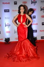 Nushrat Bharucha at Filmfare Awards 2016 on 15th Jan 2016 (435)_569b46abab01f.JPG
