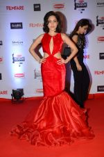 Nushrat Bharucha at Filmfare Awards 2016 on 15th Jan 2016 (436)_569b46af14d9c.JPG