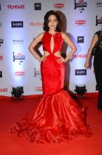 Nushrat Bharucha at Filmfare Awards 2016 on 15th Jan 2016 (437)_569b46afc75c7.JPG