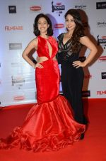 Nushrat Bharucha at Filmfare Awards 2016 on 15th Jan 2016 (440)_569b46b13d907.JPG