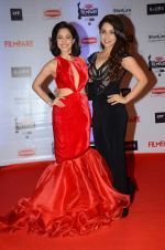 Nushrat Bharucha at Filmfare Awards 2016 on 15th Jan 2016 (442)_569b46b2adf79.JPG
