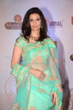 Rhea Pillai at Vikram Phadnis 25 years show on 16th Jan 2016 (208)_569b84bbee8f3.JPG