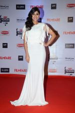 Sapna Pabbi at Filmfare Awards 2016 on 15th Jan 2016 (406)_569b47c3f0d23.JPG