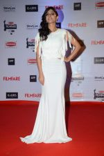 Sapna Pabbi at Filmfare Awards 2016 on 15th Jan 2016 (411)_569b47c7491f7.JPG