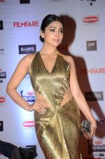 Shriya Saran at Filmfare Awards 2016 on 15th Jan 2016 (793)_569b480db90e0.JPG