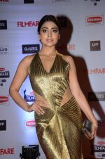 Shriya Saran at Filmfare Awards 2016 on 15th Jan 2016 (795)_569b480f88eaa.JPG
