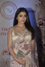 Shriya Saran at Vikram Phadnis 25 years show on 16th Jan 2016 (440)_569b7ec07ecb4.JPG