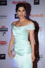 Sophie Chaudhary at Filmfare Awards 2016 on 15th Jan 2016 (47)_569b485828a5e.JPG