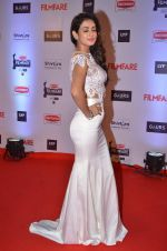 at Filmfare Awards 2016 on 15th Jan 2016 (21)_569b44f7c9232.JPG