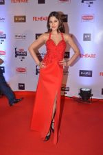 at Filmfare Awards 2016 on 15th Jan 2016 (455)_569b458c98b10.JPG