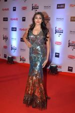 at Filmfare Awards 2016 on 15th Jan 2016 (461)_569b458d9bdc6.JPG