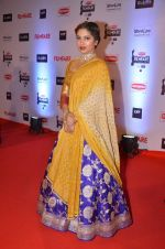 at Filmfare Awards 2016 on 15th Jan 2016 (485)_569b45938ae3c.JPG