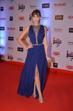 at Filmfare Awards 2016 on 15th Jan 2016 (491)_569b45972e6e9.JPG