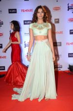 at Filmfare Awards 2016 on 15th Jan 2016 (582)_569b45b2db875.JPG