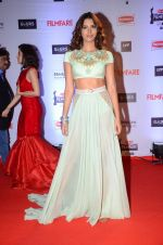 at Filmfare Awards 2016 on 15th Jan 2016 (587)_569b45b3d1e1e.JPG