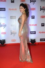 at Filmfare Awards 2016 on 15th Jan 2016 (743)_569b45c3a9f1e.JPG