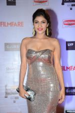 at Filmfare Awards 2016 on 15th Jan 2016 (738)_569b45c2ec58a.JPG
