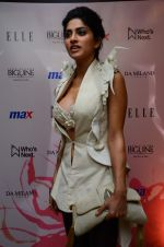 Sapna Pabbi at Elle event on 19th Jan 2016 (24)_569f6265ea86e.JPG