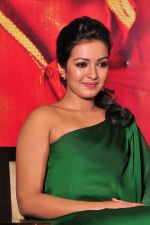 Catherine tresa Photoshoot on 20th Jan 2016 (10)_56a0b06ac165d.JPG