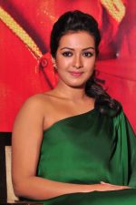 Catherine tresa Photoshoot on 20th Jan 2016 (12)_56a0b06ed6e8c.JPG