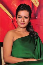 Catherine tresa Photoshoot on 20th Jan 2016 (14)_56a0b0719ab66.JPG