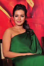 Catherine tresa Photoshoot on 20th Jan 2016 (15)_56a0b07457881.JPG