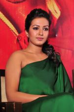 Catherine tresa Photoshoot on 20th Jan 2016 (21)_56a0b07d4991e.JPG