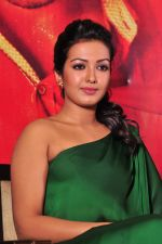 Catherine tresa Photoshoot on 20th Jan 2016 (22)_56a0b07e4fa35.JPG