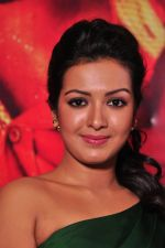 Catherine tresa Photoshoot on 20th Jan 2016 (30)_56a0b08a6fd99.JPG