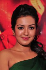 Catherine tresa Photoshoot on 20th Jan 2016 (31)_56a0b08bd3862.JPG