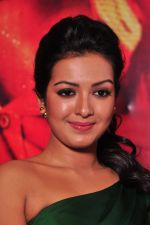 Catherine tresa Photoshoot on 20th Jan 2016 (32)_56a0b08d170e6.JPG
