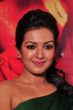 Catherine tresa Photoshoot on 20th Jan 2016 (33)_56a0b08e6ab3a.JPG