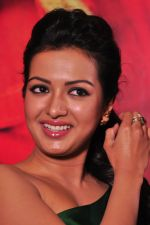 Catherine tresa Photoshoot on 20th Jan 2016 (35)_56a0b090a1dd8.JPG