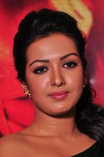Catherine tresa Photoshoot on 20th Jan 2016 (38)_56a0b095b52be.JPG