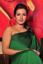Catherine tresa Photoshoot on 20th Jan 2016 (43)_56a0b09bf3352.JPG