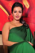 Catherine tresa Photoshoot on 20th Jan 2016 (44)_56a0b09d18274.JPG