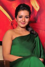 Catherine tresa Photoshoot on 20th Jan 2016 (50)_56a0b0a3a9712.JPG