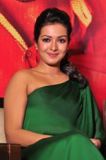 Catherine tresa Photoshoot on 20th Jan 2016 (51)_56a0b0a5e2fba.JPG