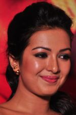Catherine tresa Photoshoot on 20th Jan 2016 (54)_56a0b0a93f302.JPG