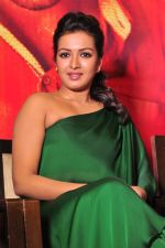 Catherine tresa Photoshoot on 20th Jan 2016 (57)_56a0b0abd3cf5.JPG