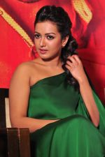Catherine tresa Photoshoot on 20th Jan 2016 (59)_56a0b0ad9f687.JPG