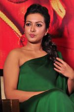 Catherine tresa Photoshoot on 20th Jan 2016 (60)_56a0b0ae8866e.JPG