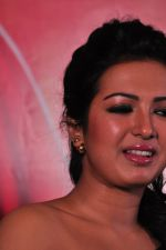 Catherine tresa Photoshoot on 20th Jan 2016 (63)_56a0b0b2129cf.JPG
